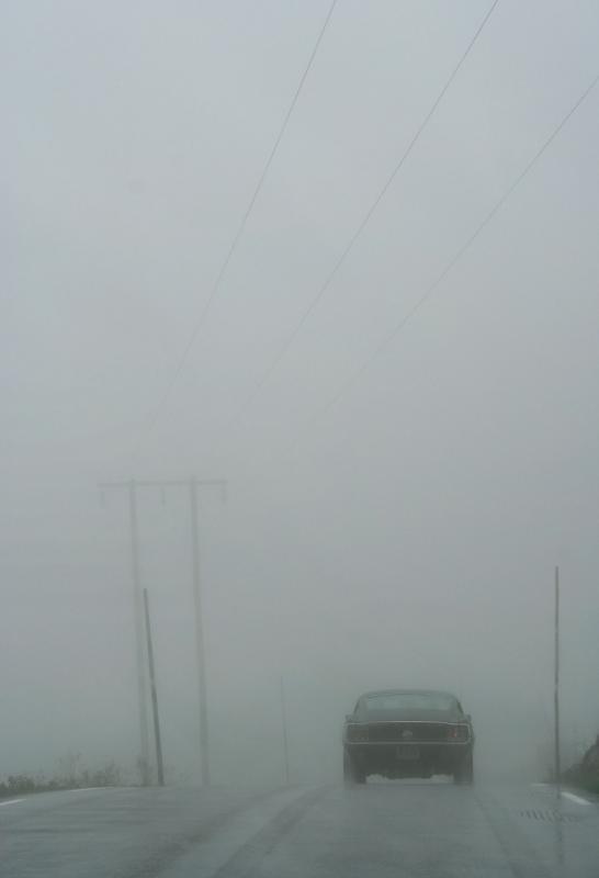 car-fog